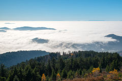 Black Forest. In autumn, Germany near Freiburg Royalty Free Stock Photos