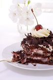 Black forest cake stock photography