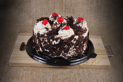 Black Forest Cake. Stock Photos