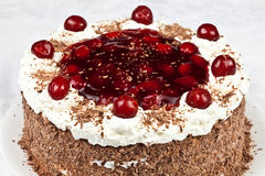 Black forest cake Royalty Free Stock Photo