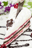 Black forest cake with a cherry Stock Images