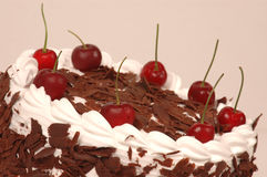 Black Forest cake with cherry Stock Images