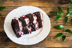Black forest cake decorated with whipped cream, berry and chocolate sauce and meringues Stock Photos