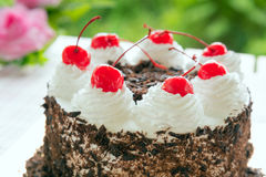 Black forest cake decorated Stock Photo