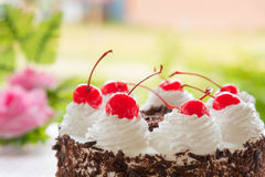 Black forest cake decorated Stock Photography