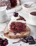 Black forest cake ,decorated with whipped cream and cherries Schwarzwald pie, dark chocolate and cherry dessert Royalty Free Stock Images