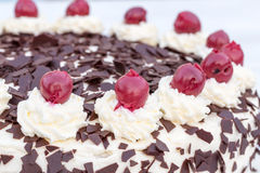 Black Forest cake in detail with white background Stock Image
