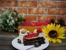 Black forest cake and flower in background royalty free stock photos