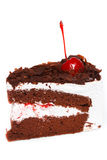 Black forest cake. Stock Images