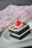 Black Forest Cake on Plate with Pink and Grey Background Stock Images