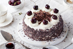 Black forest cake, Schwarzwald pie choco, cherry. Black forest cake, Schwarzwald pie, dark chocolate and cherry dessert on a white wooden background Royalty Free Stock Photos