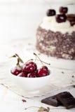 Black forest cake, Schwarzwald pie, dark chocolate and cherry dessert. Stock Photography