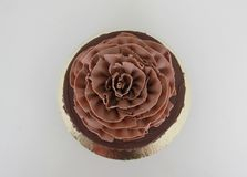 Black Forest Gateau. Black forest cake with giant choco rose as decoration on top Stock Image