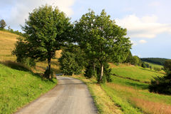 Black forest, Germany Royalty Free Stock Photos