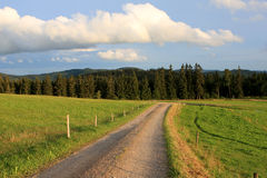 Black forest, Germany Royalty Free Stock Photo