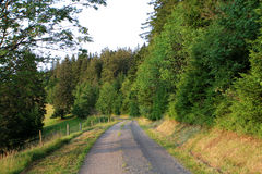 Black forest, Germany Royalty Free Stock Photography