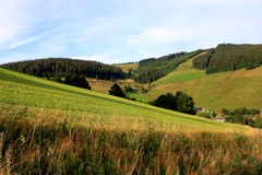 Black forest, Germany Royalty Free Stock Images
