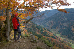 Black Forest hiker Stock Photos