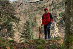 Black Forest hiker Royalty Free Stock Photos