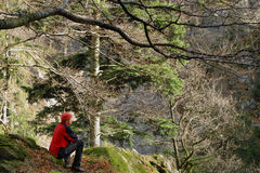 Black Forest hiker Royalty Free Stock Photo