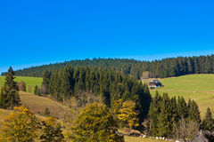 Black Forest Landscape Royalty Free Stock Image