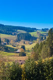 Black Forest Landscape Stock Image