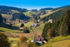 Black Forest Landscape Stock Image