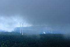 Black Forest landscape in fog Royalty Free Stock Photos