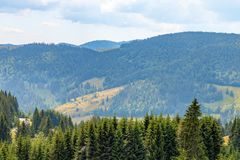 Black Forest Landscape royalty free stock photo