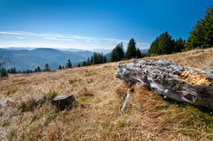 Black forest mountain scene Royalty Free Stock Photography