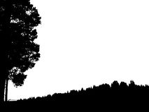 Black forest silhouette. Isolated on white background. Vector il. Lustration for your design Stock Photo