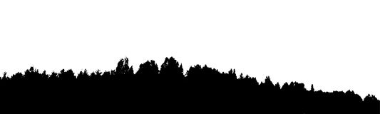 Black forest silhouette. Isolated on white background. Vector il. Lustration for your design Royalty Free Stock Photos