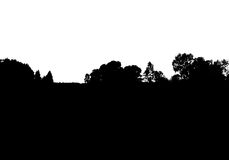 Black forest silhouette. Isolated on white background. Vector illustration for your design Royalty Free Stock Photos