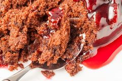 Black Forest Sponge Stock Photos