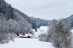 Black Forest Wintertime Stock Images
