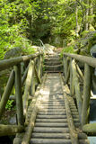 Black Forest Wooden Bridge Stock Images