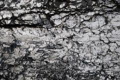 Black fossil coal background Stock Photo