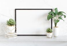 Black frame leaning on white shelve in bright interior with plants and decorations mockup 3D rendering stock illustration