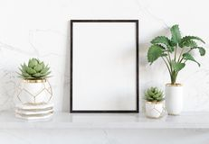 Black frame leaning on white shelve in bright interior with plants and decorations mockup 3D rendering royalty free illustration