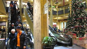 Black Friday Crowd at the Mall stock video