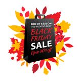 Black Friday sale inscription design. Autumn fall leaves paper bag. Black Friday sale inscription design template. Up to 50% off. Autumn fall leaves and berries stock illustration