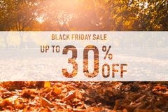 Black friday sale up to 30% off text over colorful fall leaves background. Word Black friday with colorful leaves royalty free stock images