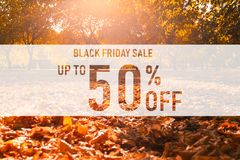 Black friday sale up to 50% off text over colorful fall leaves background. Word Black friday with colorful leaves stock illustration