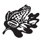 Black frog - vector illustration Royalty Free Stock Images