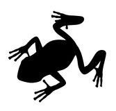 Black frog silhouette 300 dpi Royalty Free Stock Images