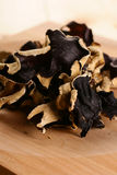 Black fungus Stock Photography