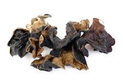 black Fungus (Jew's Ear Mushroom ) Royalty Free Stock Photography