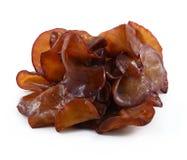 Black Fungus (Jew's Ear Mushroom ) Royalty Free Stock Image