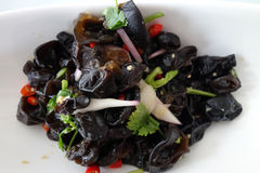 Black Fungus in Sauce Stock Photography