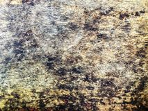 Black fungus on wood panel. The dirty on wood table panel has black fungus stains royalty free stock photo